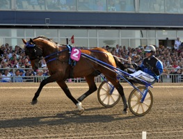 Timoko_Elitlopp final_Rinker_web